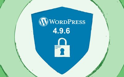 WordPress 4.9.6 Privacy update